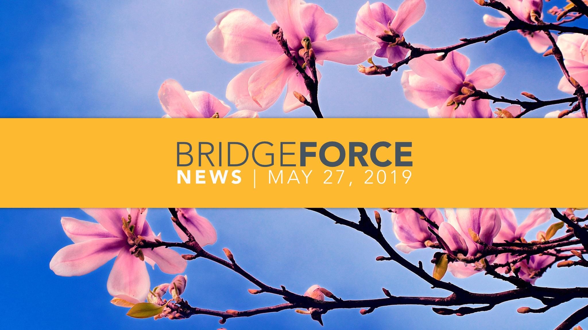 BridgeForce News